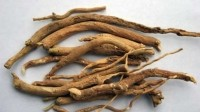 "Ashwagandha derives from Sanskrit, and means ""smells like a horse""..."