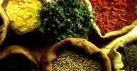 RTE Foods in India