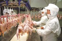 900 arrested in latest Chinese meat sting