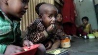 Indian researchers devise paste for world's most malnourished kids