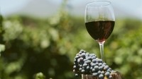NZ begins process to ferment place as leading lifestyle wine exporter