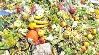 Food waste accounts for one-third of the world's food supply