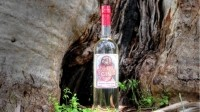 Australian bush gin prepares to take on world