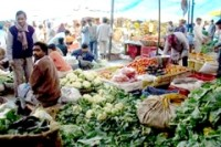 Delhi told to get tough after high pesticide levels found in produce