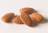 Almonds & their skins show prebiotic potential: Human data