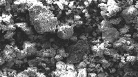 Scientists are focusing on the graphite's large-scale uses in agriculture