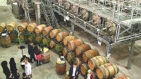 Wine school will study viniculture advances in face of climate change