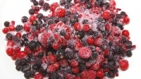 Creative Gourmet Mixed Berries were among the Patties Foods products recalled as a precaution